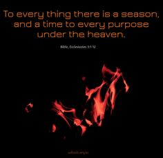 To everything there is a season, and a time to every purpose under the heaven. ~Bible  #bible #jesus #god #ShriPrashant #Advait #time #purpose #heaven  Read at:- prashantadvait.com Watch at:- www.youtube.com/c/ShriPrashant Website:- www.advait.org.in Facebook:- www.facebook.com/prashant.advait LinkedIn:- www.linkedin.com/in/prashantadvait Twitter:- https://twitter.com/Prashant_Advait