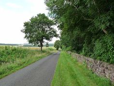 """Country road alongside the grounds of Otterburn, Scottish Borders by Oliver Dixon, via Geograph - It was the Youngs of Otterburn who were the """"chief riders"""" of the Reiver Clan Young and leaders of numerous raids on the English at Wark & Harbottle Castles."""