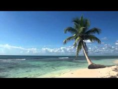 Jully Espelho da Vaidade : Relaxamento através das Ondas do Mar e Pássaros.Vídeo com linda Paisagem. Jullyespelho
