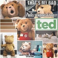 Ted Teddy Bear, Lol, Smile, Words, Funny, Gifts, Animals, Presents, Animales