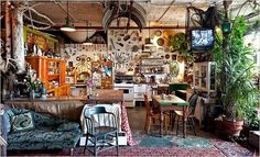 Curious Places: Live-in Cabinet of Curiosities (NY City/ New York)