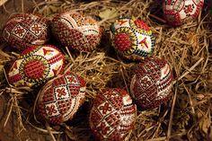 Modern encaustic Romanian Easter eggs