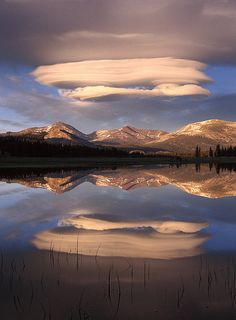 via Clouds Over Mt Dana Print By Tim Fitzharris Mount Dana, Mount Gibbs and Mammoth Peak and lenticular cloud reflections in a flooded Toulumne Meadows Yosemite National Park, California