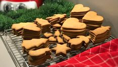 Baka glutenfritt | Glutenfria godsaker Chocolate Chips, Pepparkakor, Scones, Brunch, Cookies, Baking, Desserts, Food, Crack Crackers