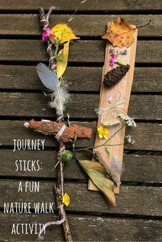 Nature crafts for kids: how to make a journey stick on a nature walk. A brilliant nature craft to help children learn about nature and their environment. Forest School Activities, Nature Activities, Toddler Activities, Learning Activities, Outdoor Activities, Summer Activities, Sorting Activities, Kids Learning, Art Et Nature