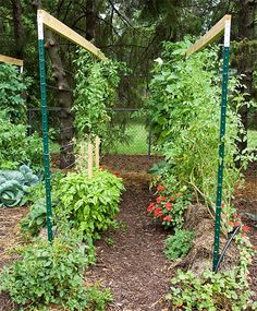 Trying a straw bale garden is on my list of to-dos! This one by Joel Karsten, author of Straw Bale Gardens!