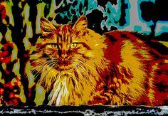 Pop Art Orange Tabby Cat