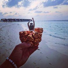 Beach, Summer, Maldives, Summer Time, The Beach, Beaches