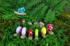 Fairy Garden Snail - accessory for terrarium choice of color miniature bug handmade polymer clay ONE