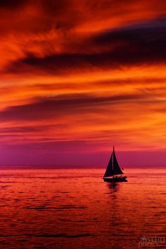 ~~Fire in the sky ~ sailing in the sunset, Pacific Ocean, Los Angeles, California by Aydin Palabiyikoglu~