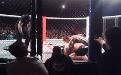 Conor McGregor critica árbitro do TEF, depois da vitória de Charlie Ward