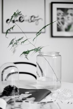 Simply Black and White - Photographed by Alice Johnsson [3]