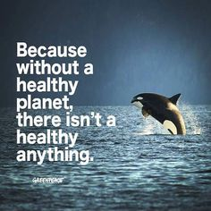 Because without a healthy planet, there isn't a healthy anything. Greenpeace