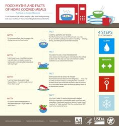 4 Food Myths & Facts Of Home Cooked Meals - Infographic Food Safety Training, Food Safety Tips, Food Tips, Date Recipes, Microwave Recipes, Food Science, Life Science, Home Food, Food Facts