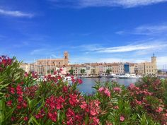 La Ciotat Le Vieux Port