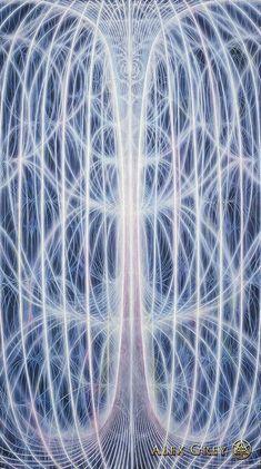 Human Energy Torus: Neuotransmitter ? Magnetic Human Brain electricity ? Tesla?