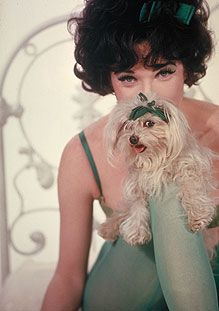 HOLLYWOOD, 1963 -- Shirley MacLaine poses with a small dog in the motion picture Irma La Douce.