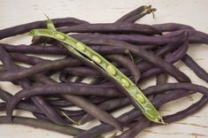 "Types Of Purple Hull Peas: Learn How To Grow Purple Hull Peas - If you are from the southern United States, I'm betting you have grown, or at least eaten, your fair share of purple hull peas. The rest of us might not be as familiar and are now asking ourselves ""what are purple hull peas?"" Find out in this article."