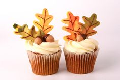 Acorn for fall cupcakes