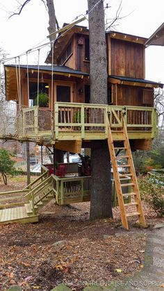 Glamorous treehouse, Pete Nelson - Treehouse Masters Season 9