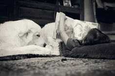 Story time #love #greatpyrenees #books #sweet #beauty