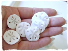 Tutorial for making sand dollar forms using white & translucent Fimo--make into tags, jewellry etc. From Make It With Me.