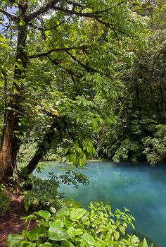 Rio Celeste in Tenorio Volcano National Park, Costa Rica (by jeffbrian).