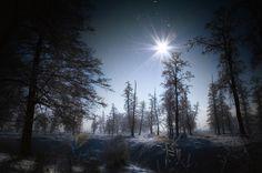 冬の太陽の光 冬 自然 高解像度で壁紙