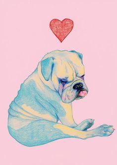 Love your pet - Natalie Foss Bulldogge Tattoo, Bulldog Wallpaper, Bulldog Drawing, Animals And Pets, Cute Animals, Wallpapers En Hd, Bulldog Pics, Bullen, Old English Bulldog
