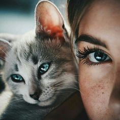 Who dares to resist the beautiful eyes💜💚❤💙💛😺😺😺 Source: zedge app Animals And Pets, Baby Animals, Funny Animals, Cute Animals, Funny Dogs, Cute Kittens, Cats And Kittens, Crazy Cat Lady, Crazy Cats