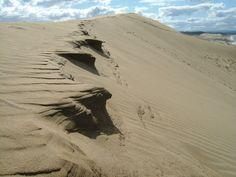 鳥取砂丘。風でできた砂の形らしいが微妙なバランスを保っているのがすごい。