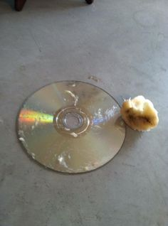 Tip of the Week - A step-by-step guide to using a banana to fix scratched dvds - Uniquely Undone