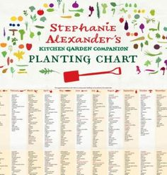 Pretty {Stephanie Alexander's Kitchen Garden Companion Planting Chart}
