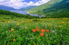 """""""天空の湖""""と賞賛される絶景!群馬県の「野反湖」は大自然の宝庫だった   RETRIP[リトリップ]"""