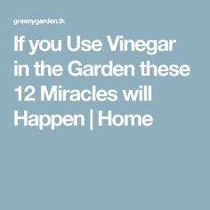 If you Use Vinegar in the Garden these 12 Miracles will Happen | Home
