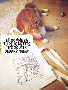 Pixel le chat et son sac Hodor & Mrou / Pixel The cat with his bag Hodor and Mrou the Cat #Hodor #cat #chat #gameofthrones
