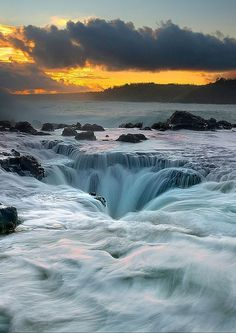 11 Places You Can't Miss In Hawaii (Oahu) - Avenly Lane Travel Honeymoon Vacations, Hawaii Honeymoon, Hawaii Vacation, Oahu Hawaii, Hawaii Travel, Dream Vacations, Vacation Spots, Beach Travel, Kauai