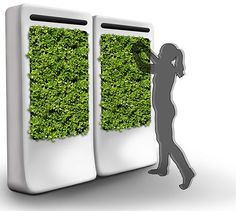 FreshWall - Eat, breathe and enjoy the nature  Grow your own food and make your indoor air cleaner with FreshWall – vertically, year round with near zero maintenance. And it looks awesome!