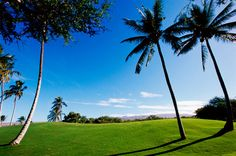 From the first tee to the last beverage, golfing in Hawaii is different. Here are a few suggestions to make your golf experience in Hawaii more pleasant.