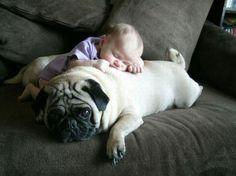 sleepy - #baby #sleep #couch #dog #cute