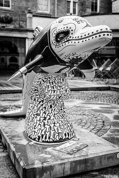 Dia del Dolphin