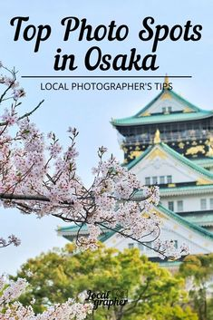 Fill out your Osaka itinerary with these best day trips to take from Osaka. All of these trips are within 2 hours of Osaka and include the top things to do and see nearby Japan Travel Guide, Asia Travel, Travel Guides, Travel Fund, Travel Pics, Solo Travel, Osaka Itinerary, Visit Japan, Osaka Japan