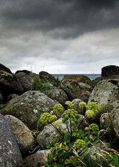 Stock Photo - Stormy weather at Obrestad, Rogaland, Norway My Images, Pop Up, Norway, Weather, Stock Photos, Landscape, Photography, Studio, Colour