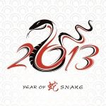 Year of the Snake 2013, Chinese Zodiac, this year.  To protect:  wear tiger eye.