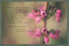 Pink Heather Inspiration