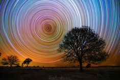 Eppalock Startrails by Lincoln Harrison - This guys work is amazing! Check out all his other work too. Learn how star trail photography is done here www.trickphotographyandspecialeffects.us/star-trail-photography-tricks