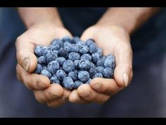 5 Foods That Fight and Reverse Diabetes