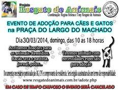 Bonde da Bardot: RJ: ADOÇÃO DE ANIMAIS NO LARGO DO MACHADO, NESTE D...