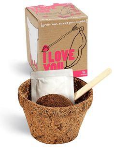 """Ein """"Ich liebe dich"""" Pflanzen-Set  - einzigartige #Geschenk-Idee für Verliebte! #Liebe #love #gift #Valentinstag"""