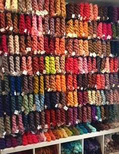 Koigu yarn my number one collection!  I will never have enough colorways!
